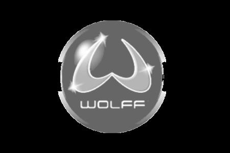 Wolf Boden Schleifgeräte